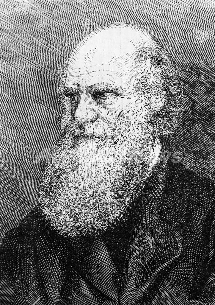 ダーウィン『種の起源』初版本、1500万円で落札