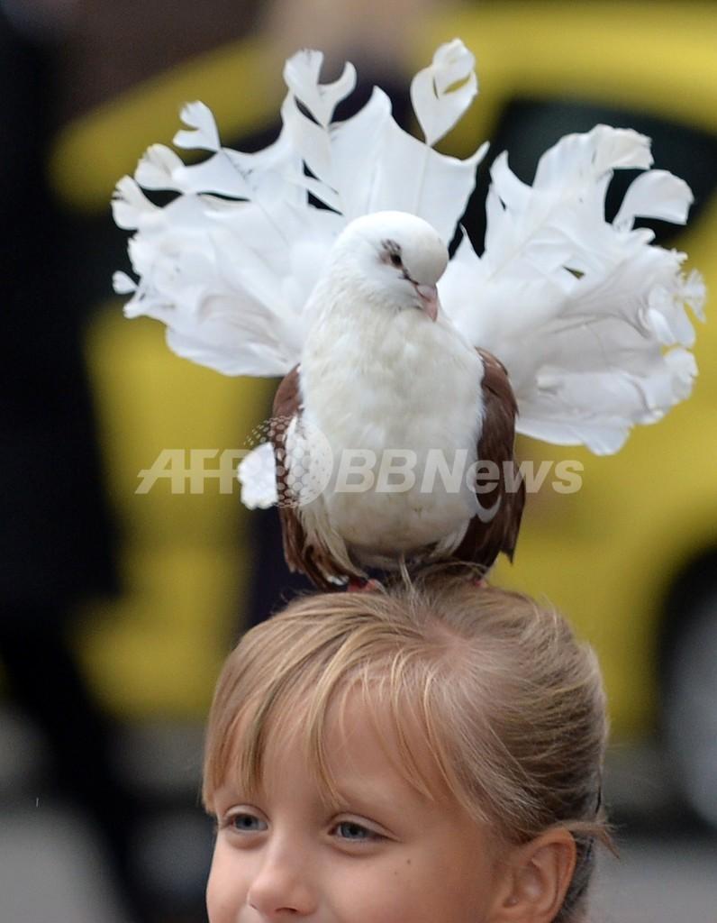 「ぼくも撮ってよ」、少女の頭に白いハト ウクライナ