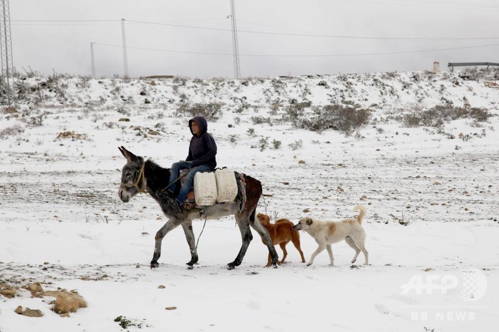 チュニジアで寒波、2人死亡