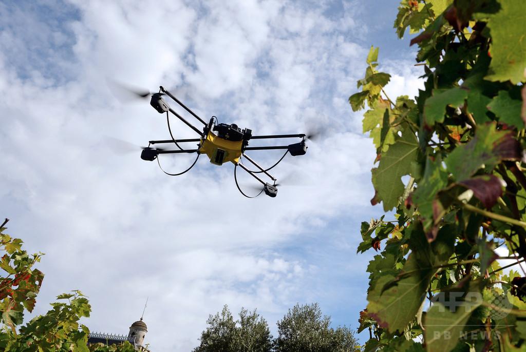 仏原発にまた謎の無人機、東部のビュジェ原発