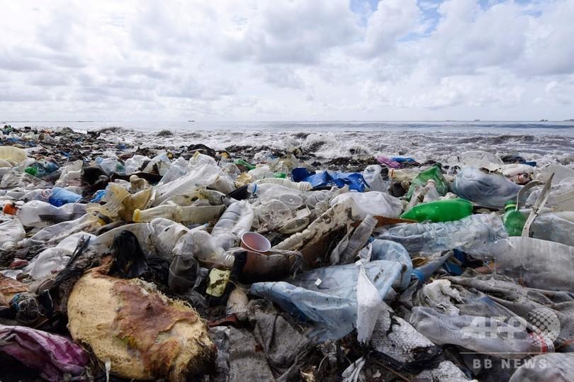 プラスチック、劣化で温室効果ガス放出 米研究