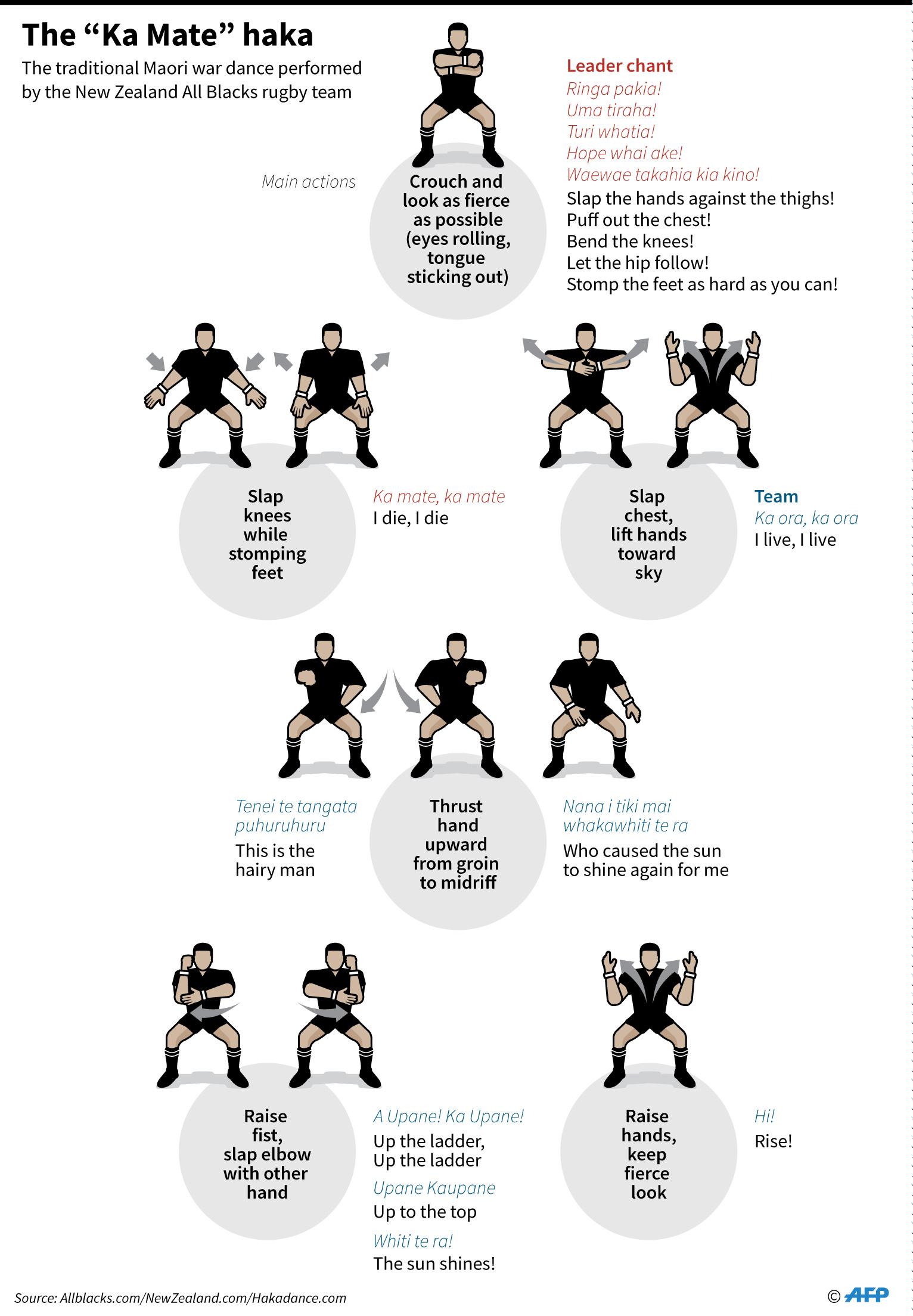 【動く図解】マオリの民族舞踊「ハカ」、オールブラックスの儀式で有名