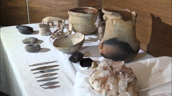 動画:ブラジル国立博物館火災 1000以上の所蔵品を回収