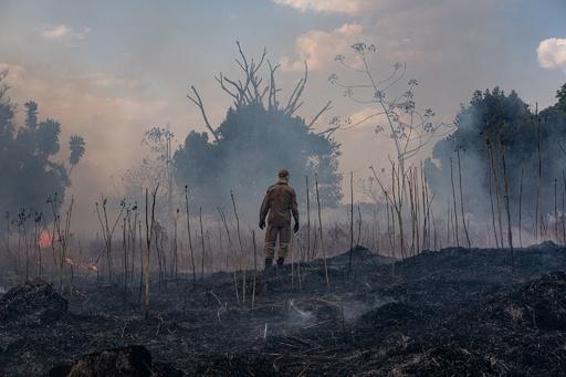 ブラジルが野焼き禁止令 アマゾン森林火災、効果に疑念も