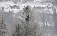 【特集】AFPのベストショット:1月13~19日