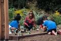 トランプ夫人、オバマ夫人の菜園で野菜収穫