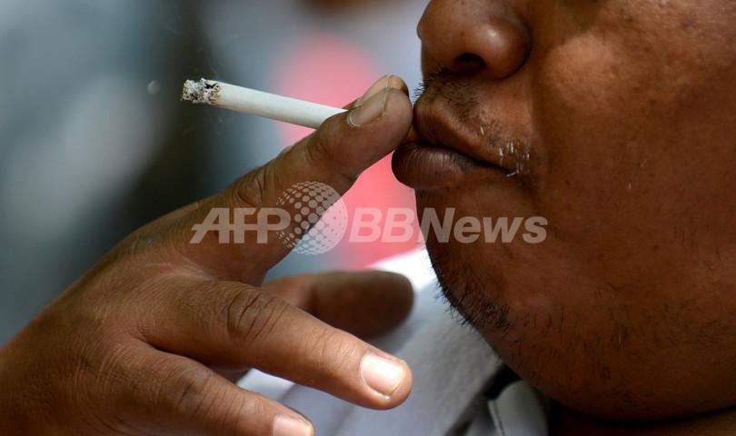 禁煙で太る原因、大食ではなく腸内細菌か スイス研究