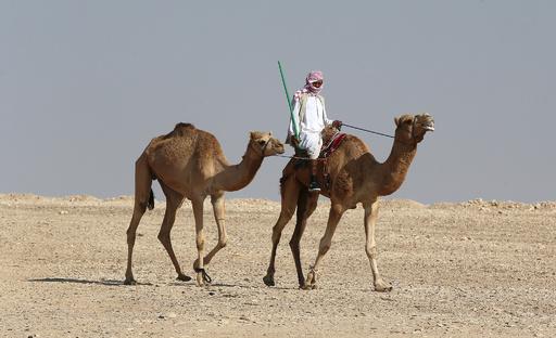 砂漠の国カタールで気温1.5度、過去最低を記録