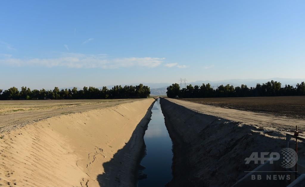 米カリフォルニア州全域に節水令、干ばつ深刻化で史上初の措置