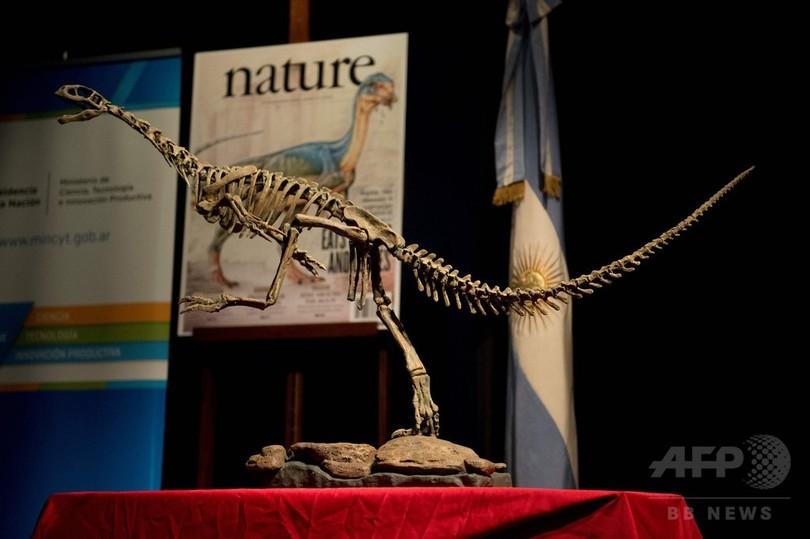チレサウルス、恐竜進化の「ミッシングリンク」か 最新分析
