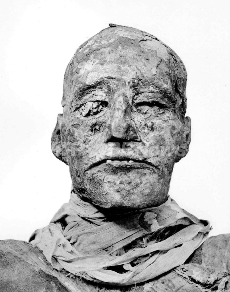 古代エジプトの王殺し、科学技術で3000年の謎解ける