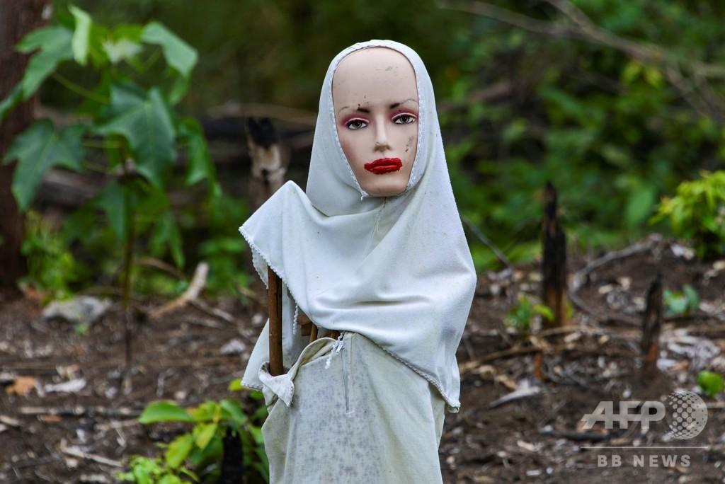 【今日の1枚】マネキン人形が田畑を守る