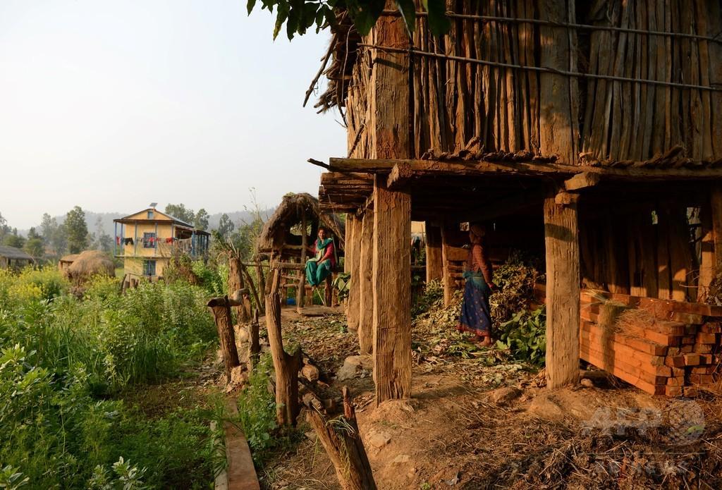 生理中の少女を隔離、屋外の小屋で蛇にかまれ死亡 ネパール