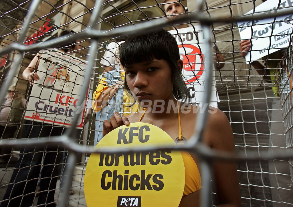 国際動物愛護団体PETA、ニワトリのケージの中からケンタッキー・フライド・チキンに抗議
