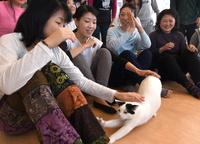 犬や猫と楽しむヨガ教室 首都圏で人気じわり