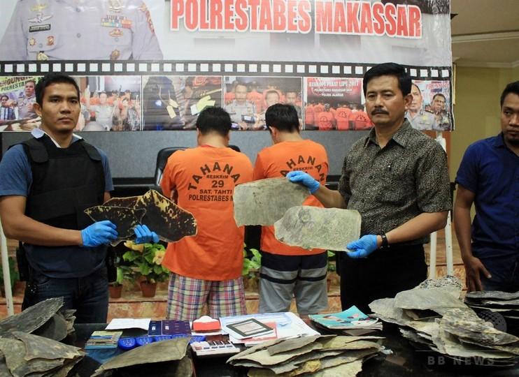 ウミガメのべっ甲200キロを密輸、中国人2人を逮捕 インドネシア