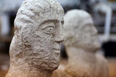 地表から像の頭部が…イスラエル人女性、古代ローマの胸像を偶然発見