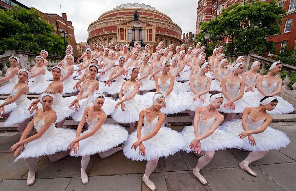 バレリーナ60人で圧巻の「白鳥の湖」、ロンドン