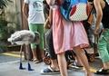 靴を履いて散歩するフラミンゴ、シンガポール
