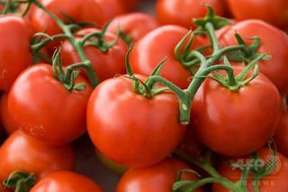 1日2個のトマトが肺機能低下を緩和、リンゴなども同様の効果 研究