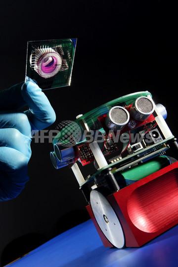ラットの神経細胞でできた「脳」を持つロボット、英研究者が発表