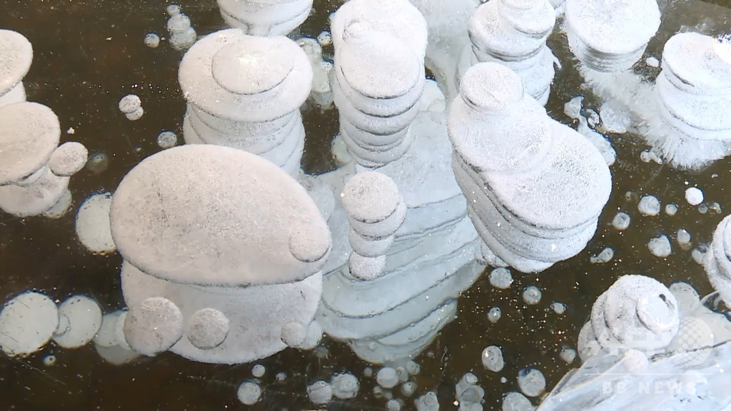 芸術的な自然現象「氷の泡」に観光客が殺到 「中国の北極」漠河市