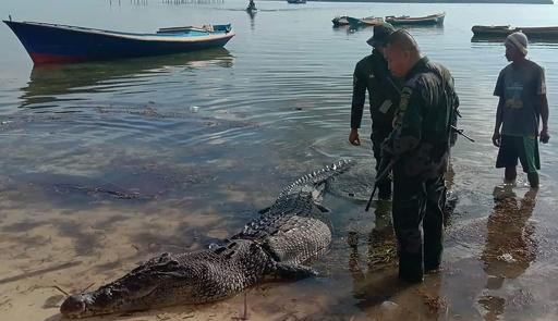 巨大ワニが漁師襲い殺害、ボートから引きずり落とす フィリピン