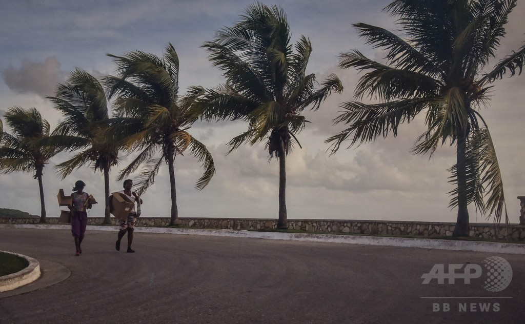 イルカ6頭、ハリケーンからヘリで避難 キューバ