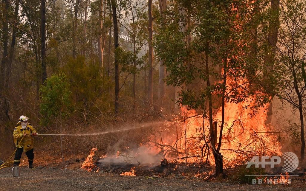 豪森林火災で3人死亡、150軒が焼損 消火活動続く