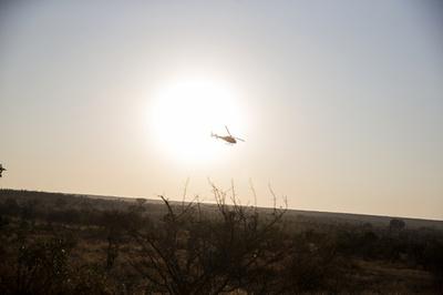 原因は機外へ飛び出したズボン… NZでヘリ墜落、3人死亡