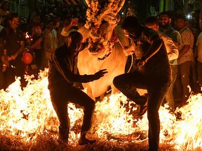 【今日の1枚】炎と陶然 インド