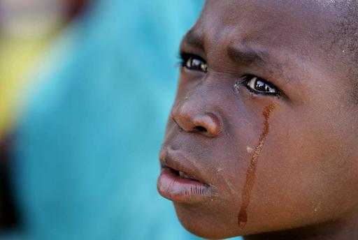 チャド子ども誘拐未遂事件、子どもたちの今