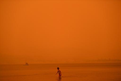 ニュージーランドに煙霧、「不穏な空」と通報多数 豪火災の影響