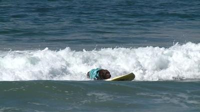 動画:ボード操作はお手のもの、米カリフォルニアで犬のサーフィン大会
