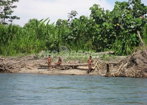 アマゾン森林地帯に未接触部族、ペルー政府が近づかないよう勧告