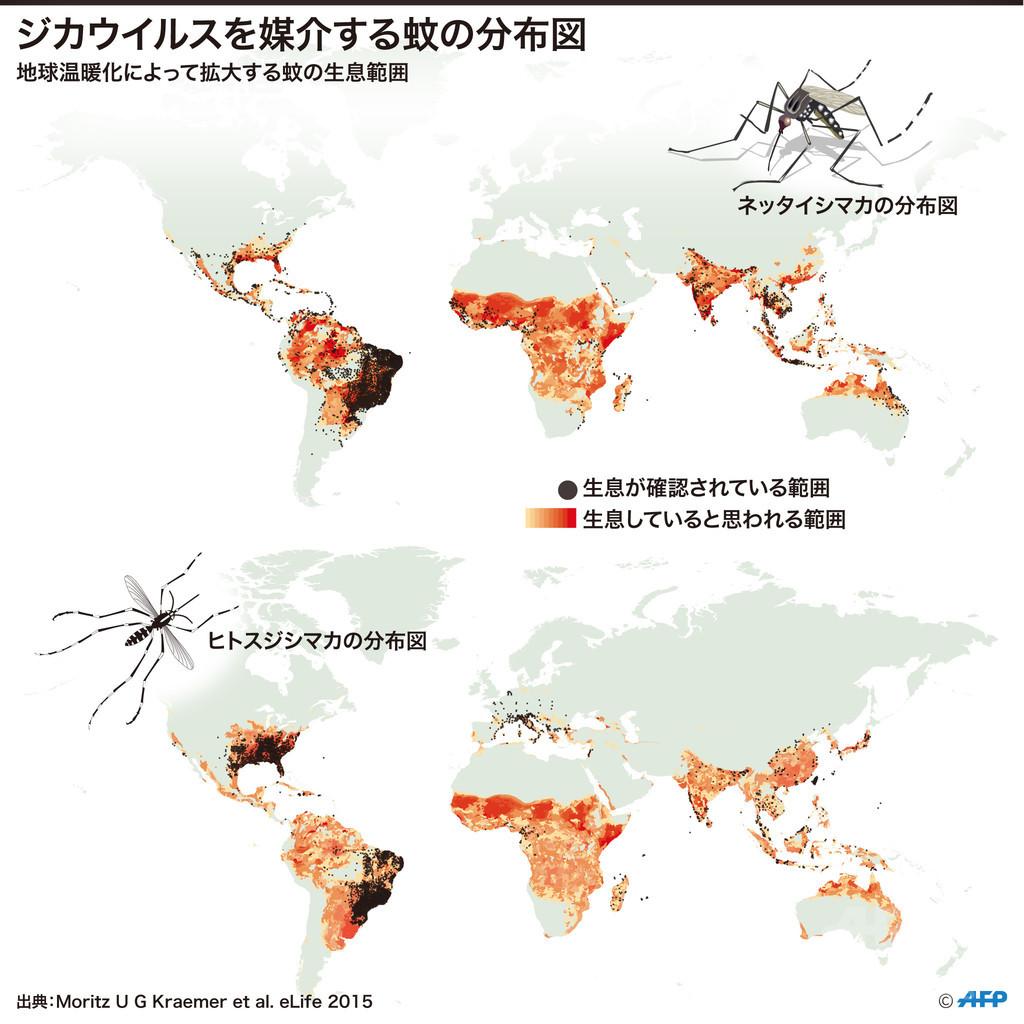 【図解】ジカウイルスを媒介する蚊の分布図