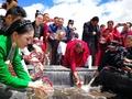 中国最大の塩水湖で湟魚の稚魚放流、青海