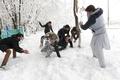 アフガン、大雪による雪崩で100人超死亡