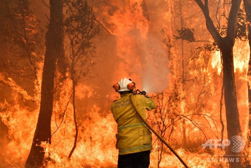 大規模森林火災の豪東部、有害な煙霧に覆われる