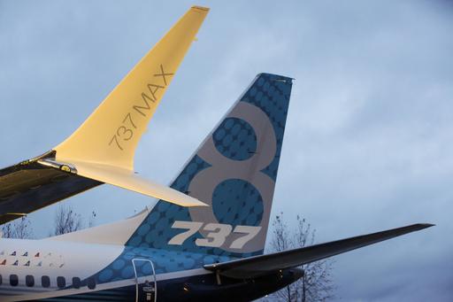 インドネシア、737MAX型機の設計ミスを指摘 ライオン航空機墜落報告書
