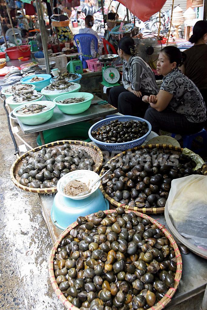 ベトナムで頻発する食の安全の問題、人々の間に広がる不安