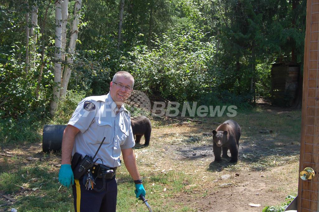 「マリフアナの番人」はクマ14頭、警官とは記念撮影? カナダ