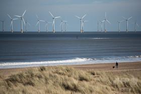 大西洋での風力発電、世界全体に電力供給の可能性 米研究