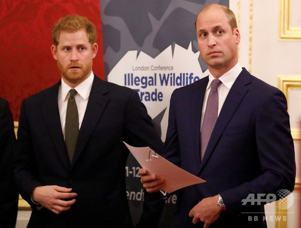 英ヘンリー王子、兄ウィリアム王子と「道は異なる」が「愛している」