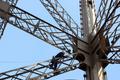完成から120年のエッフェル塔、7年に1度のお色直しへ