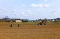 晴れ間に大急ぎ、種まく春 四川省