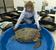 寒波でコチコチになったウミガメ、病院で「温め治療」中 米フロリダ州