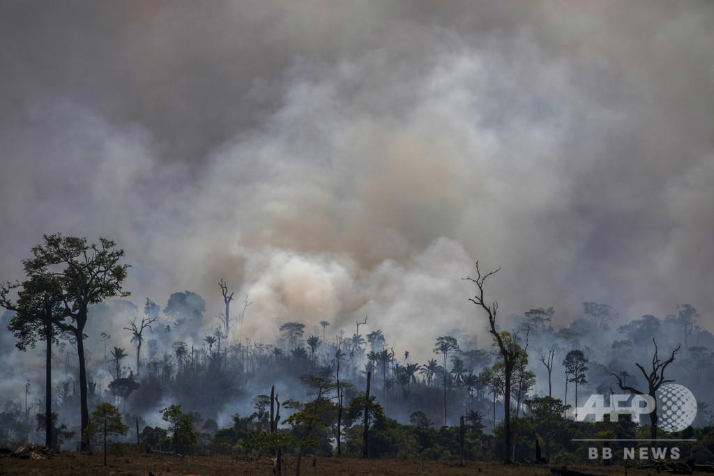 アマゾン森林火災でアンデス山脈の氷河融解が加速、研究