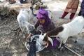 ヒンズー教徒による8歳女児の集団レイプ殺人、イスラム教徒が離村 印