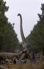 迫力満点! 森の中で実物大の恐竜に会えるテーマパーク ポルトガル
